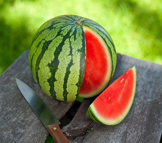 Meloen weetjes